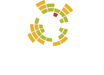 SearchSprint